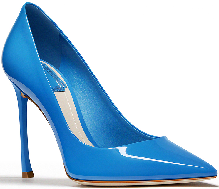 Chic and Beautiful Dioressence Pumps